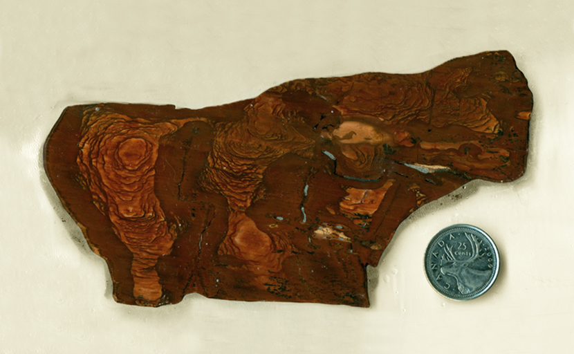 Reddish-brown slab of Biggs Jasper from Oregon, with a series of patterns like and aerial view of mountains.