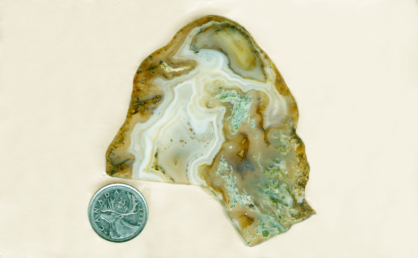 Green, white and coffee-colored Ochoco Moss Agate from Oregon with moss inclusions and fortification patterns.