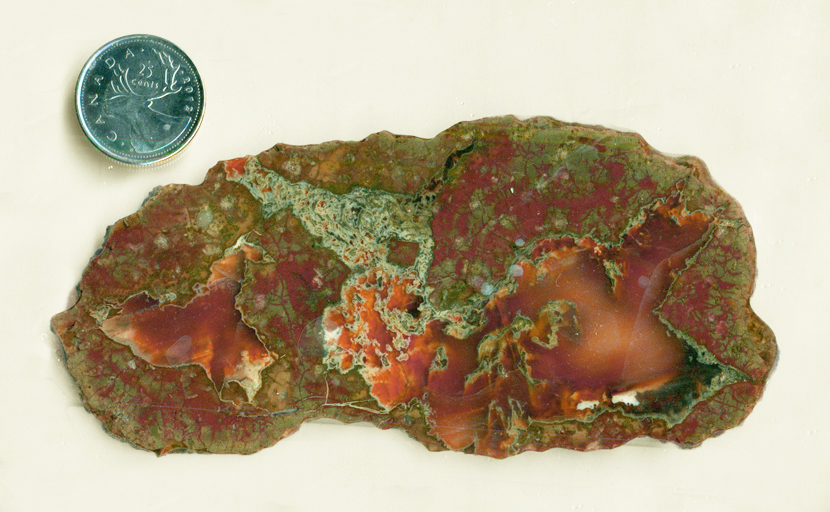 Red and green matrix and star-shaped chalcedony in a Thunderegg slab from Arizona.