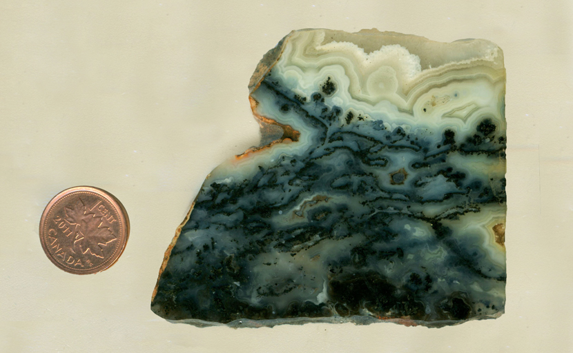 Colorless, patterned agate slab from Wyoming, patterned with black plumes of manganese.