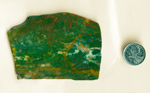 Slab of fancy Jasper from India, green with spots and circles of red and yellow, and cloud patterns of white.