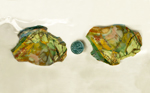 Two sides of a slab of Morrisonite Jasper, patterned with orange, green, yellow, pink and red.