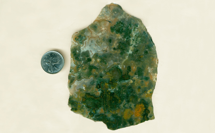 Green and orange moss in a large slab of Horse Canyon Agate from Tehachapi, California.