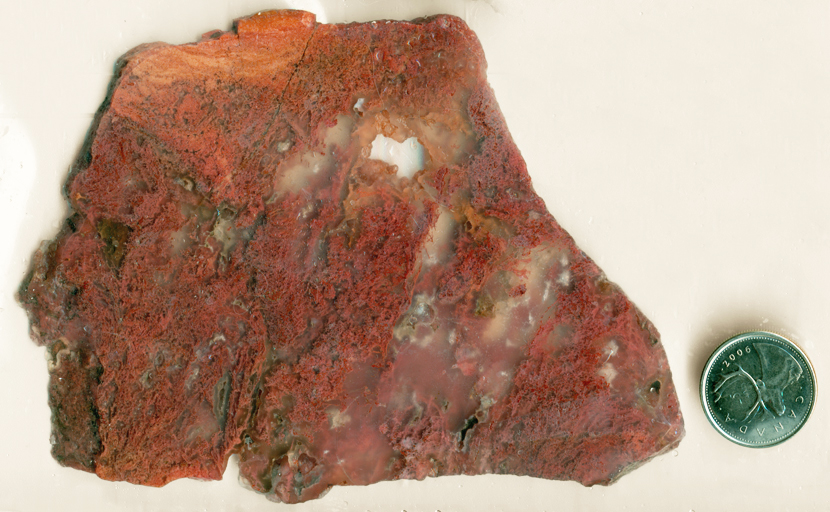 Hanging red and orange moss inclusions in a slab of translucent Pink Moss Agate from Oregon.