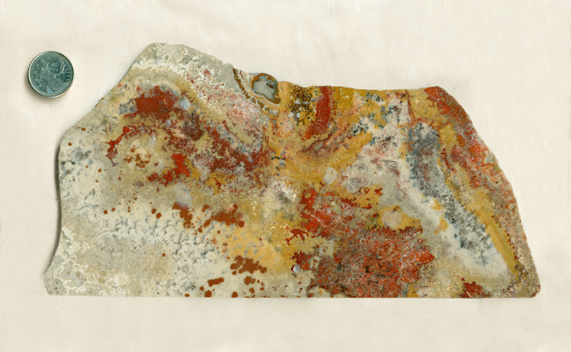 Red, yellow, orange, black and white leaf patterns across a panoramic slab of Mexican Crazy Lace Agate.