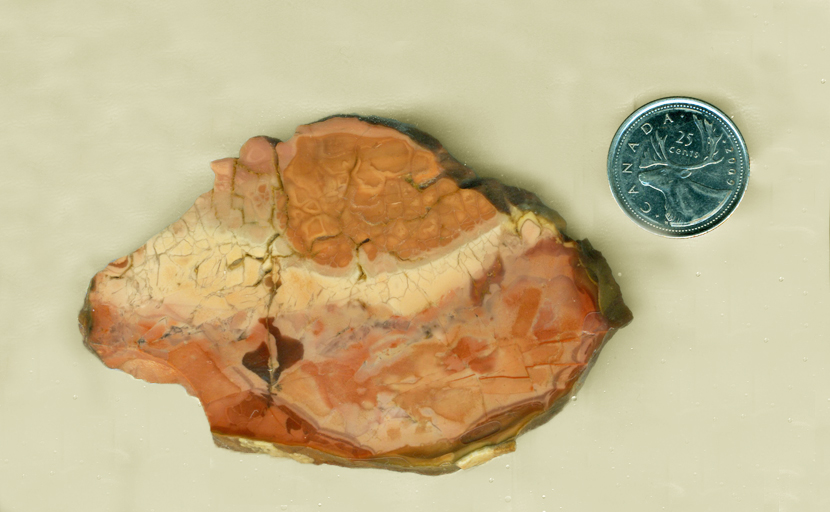 Orange-pink patterned slab of Morrisonite (Morrison Ranch Jasper) from Oregon, with a lighter creamy section across the middle.