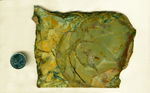 Large green, blue, red, yellow and orange slab of Morrisonite (Morrison Ranch Jasper) from Oregon.