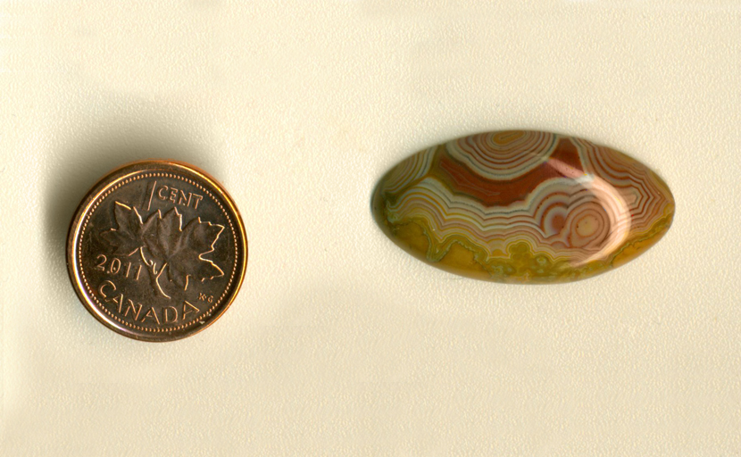 Calibrated polished oval Fairburn Agate cabochon from Nebraska or South Dakota, with filigree patterns of red, white and blue, around a solid fortification of red, on a brown background.