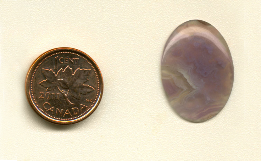 Calibrated, polished oval Royal Aztec Agate cabochon from Mexico, with rich purple moss and fortifications against a translucent background.