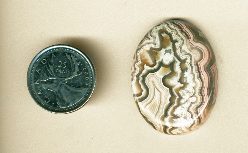 Polished cabochon of Mexican Crazy Lace Agate, with a central white fortification and white lace patterns, with pink lace patterns around the edges.