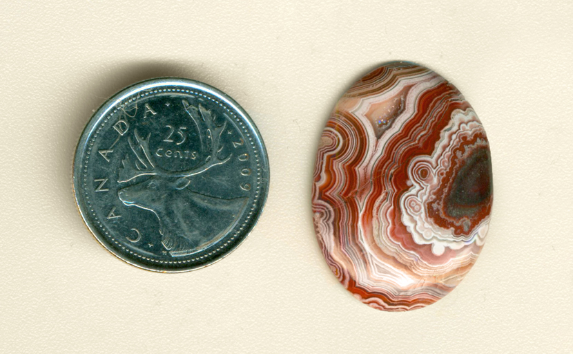 Polished cabochon of Crazy Lace Agate from Mexico, with intricate patterns of red and white with a sparkly druzy crystal pocket.