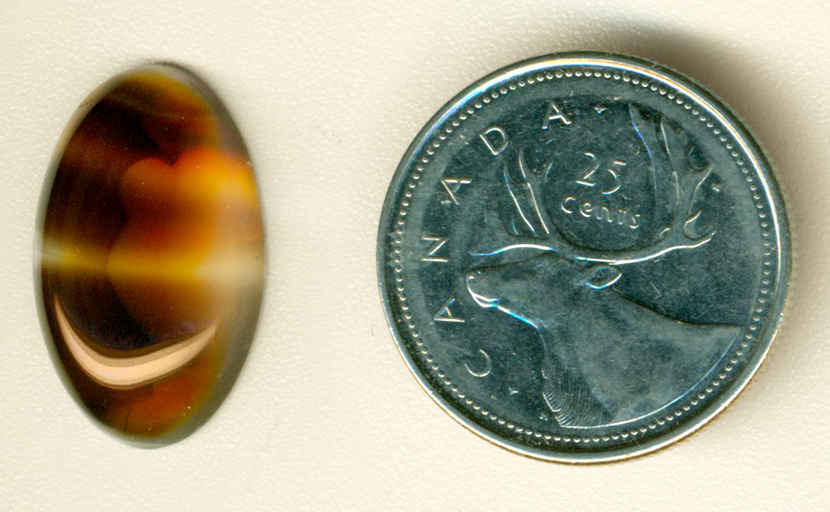 Light and dark coffee-colored cabochon of Montana Agate, with several clear windows and streaks across the darker background.