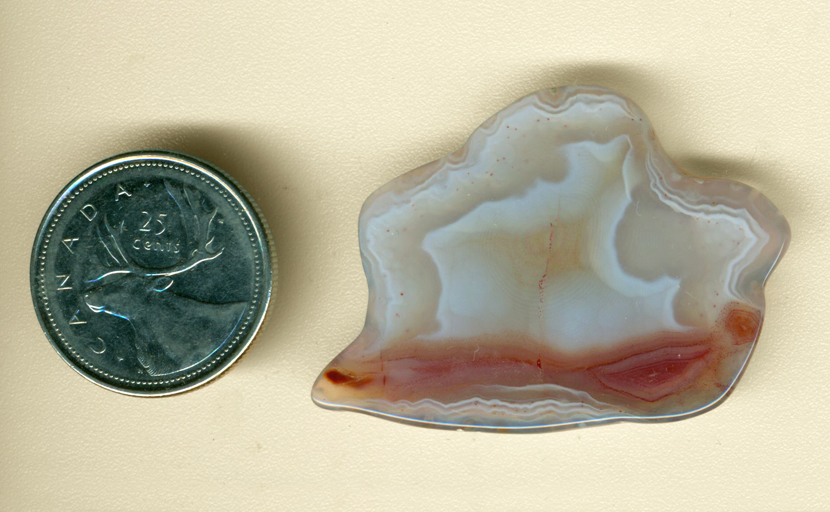 Irregularly shaped white and red Laguna Agate from Mexico, with white shell shapes and red river running underneath.
