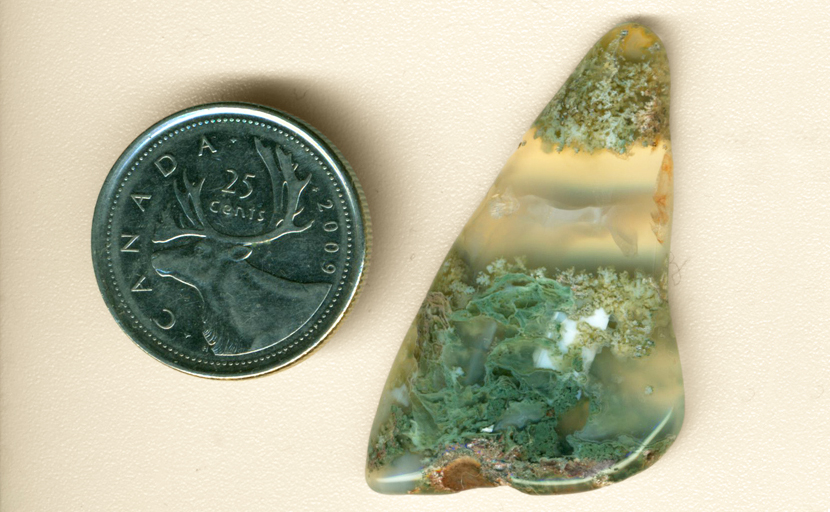 Freeform polished Ochoco Green Moss Agate, with floating moss inclusions in clear chalcedony.
