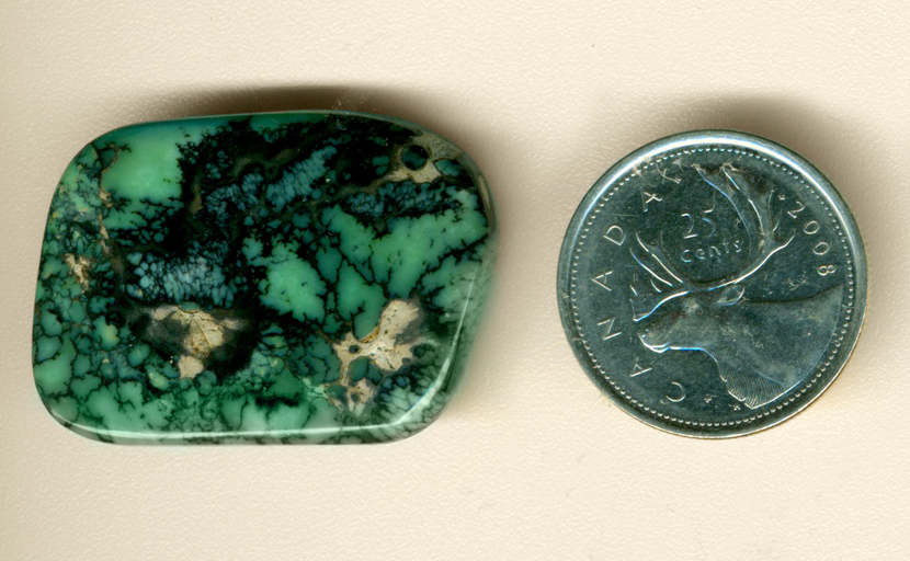 Black spiderwebs across a creamy green background in a freeform Spiderweb Variscite from Utah.