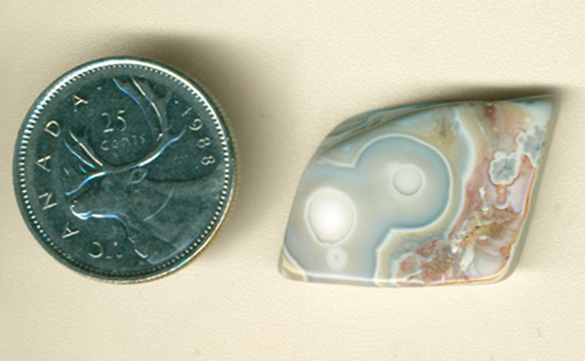 Blue section with white eyes and a red-brown space in a freeform polished Structural Eye Agate from Mexico.