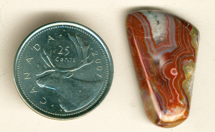Reddish-brown and blue fortification in a trapezoidal cabochon of Crazy Lace Agate from Mexico.