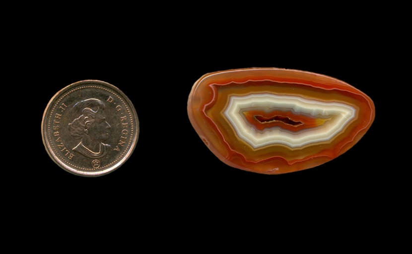 A polished freeform Fortification Agate from Mexico, with concentric patterns of white, red and a little yellow, all extending deeply into the stone.