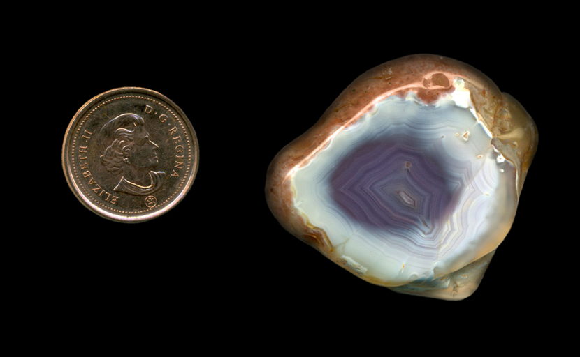 Freeform polished Fortification Agate from Mexico, with a violet blue spot over a white background.