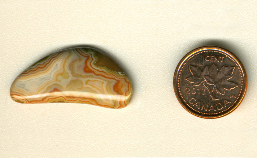 A freeform cabochon of Fairburn Agate, bow shaped, with yellow, red and parchment colored spreading patterns.