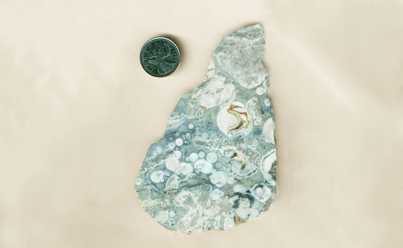 Blue-gray Rhyolite, full of semi-circular light-colored patterns and other, less regular shapes.