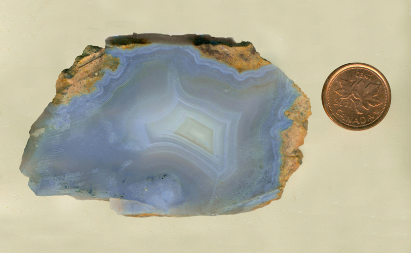 A slab of Mount Airy Blue Agate from Nevada, bright, strong sky blue with fortification patterns, all within a thin layer golden yellow matrix.