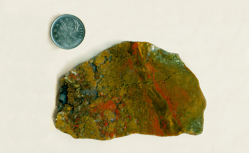Slab of Moss Agate from Antelope, Oregon, bean-shaped, with moss inclusions of bright red, yellow and green.