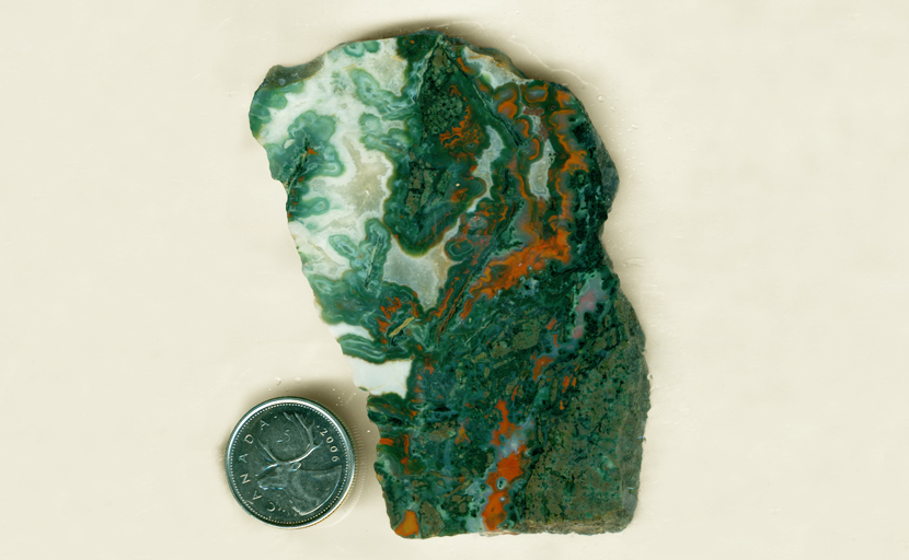 Green leaf-patterns, with red edges and white spaces, in a slab of Idaho Vein Agate.
