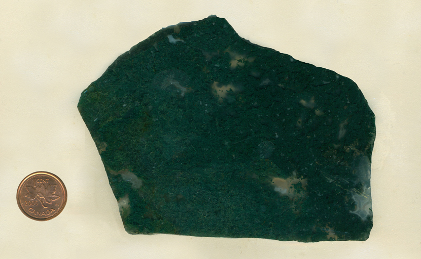 A slab of Green Moss Agate from India, filled with dense green moss patterns and with a blue fortification pattern in the lower right hand corner.