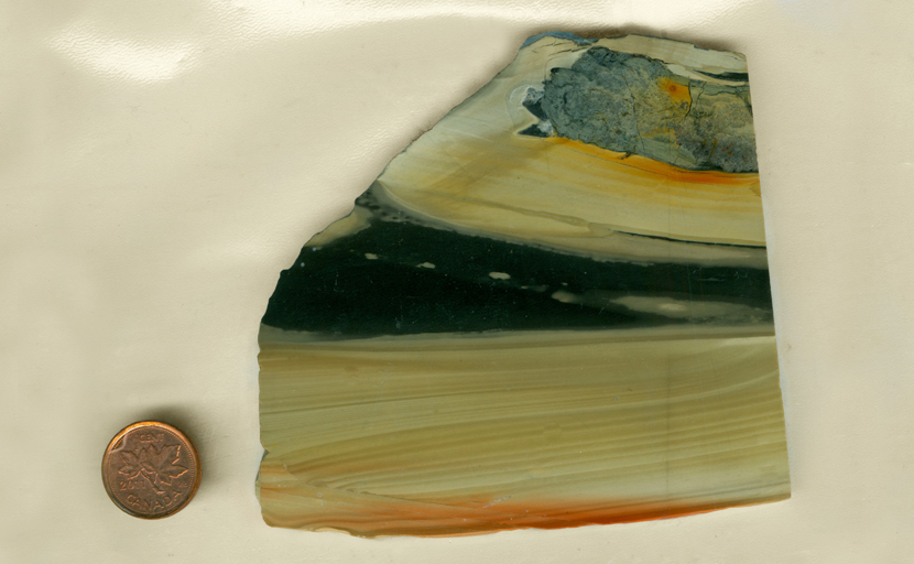 A slab of Zebra Agate from India, with black bars on a creamy background, and streaks of bright orange beside them.