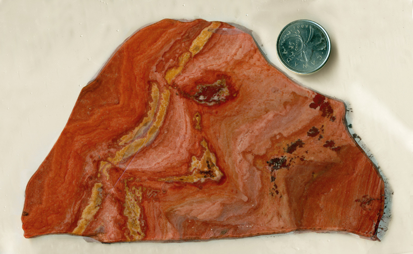Red and orange flowing patterns in a slab of Apache Sage Rhyolite from Deming, New Mexico.