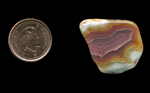Freeform polished Fortification Agate from Mexico, with a center of light purple and an outer layer of yellow, fading into white at the edges, the former being bordered with a raised rim.