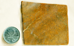 Gold-colored reflective fibers on top of an orange background in a square slab of Fire Jade from Wyoming.
