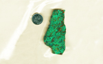 A bright green, blue and red slab of Chrysocolla from Arizona, patterned like leaves and ponds.