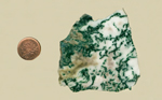 Bright green moss patterns over a white background in a chalcedony from India.