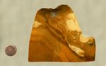 A brown and cream-colored slab of jasper, swirled together like butterscotch.