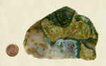 Thunderegg agate slab with thunderegg pattern, highlighted around the edges with blue and gray, bordered with yellow and green.