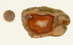 Orange and red fortification and a clear background in a slab of Laguna Agate from Mexico.