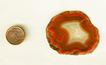 A red slab of Coyamito Agate from Mexico with a strong fortification pattern dominating most of its surface.